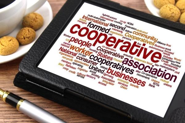 Co-operative (Co-op)